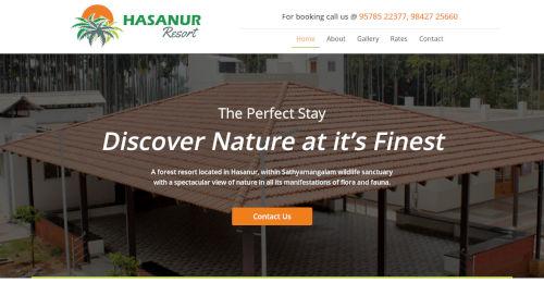 Website design Hasanur, Website design in Hasanur