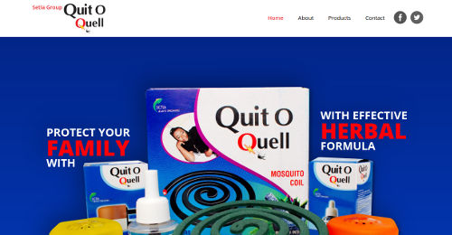 Website design Africa, Website design in Africa